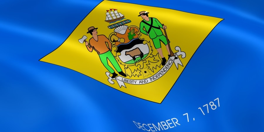 Besteuerung einer Delaware LLC